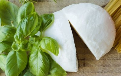 Panierte Pesto-Mozzarella