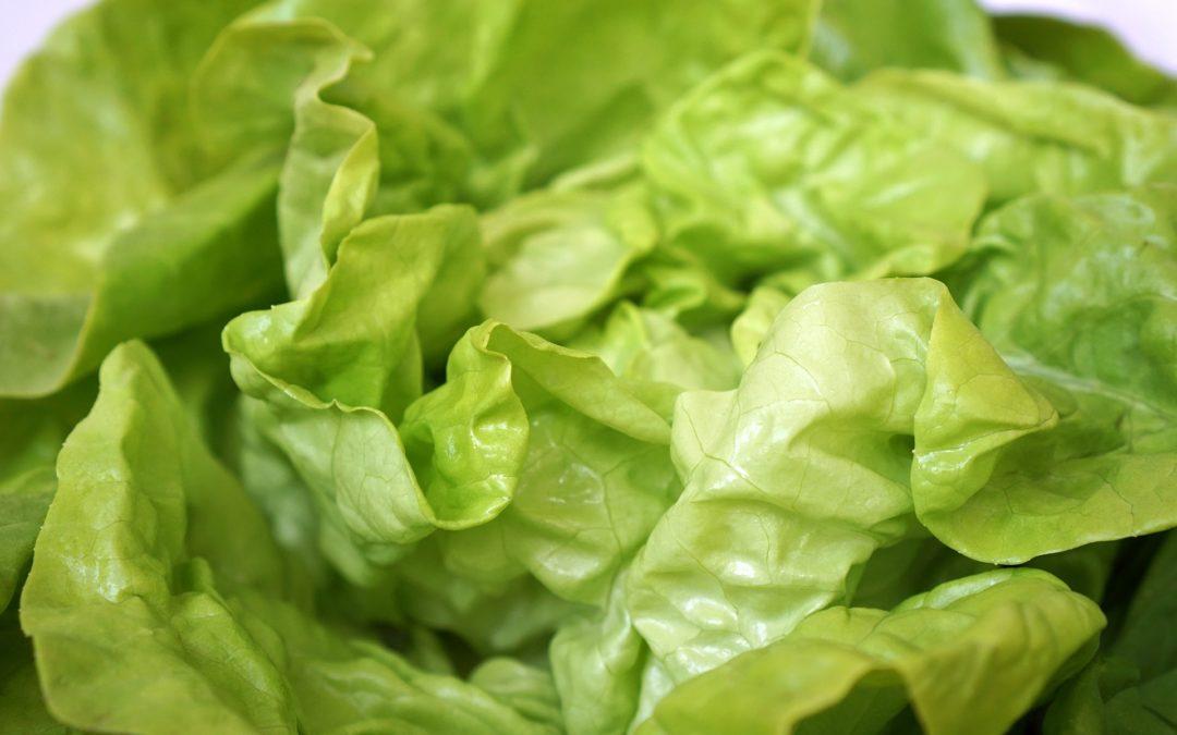 Elsässer Salat